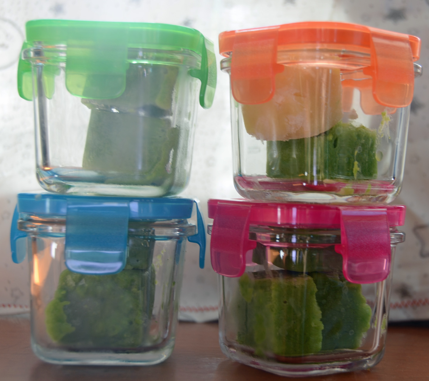 Best Containers To Freeze Homemade Baby Food